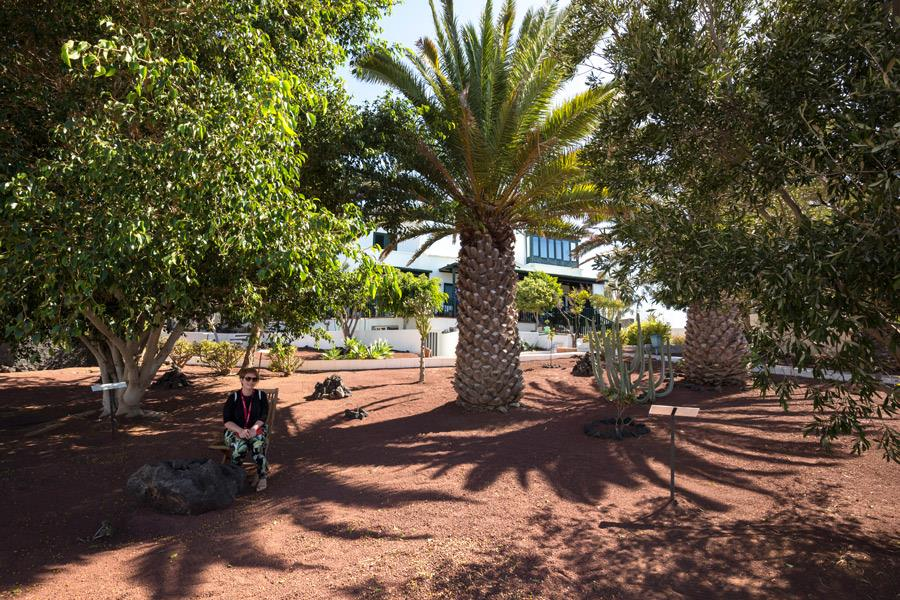 Giardino di Saramago