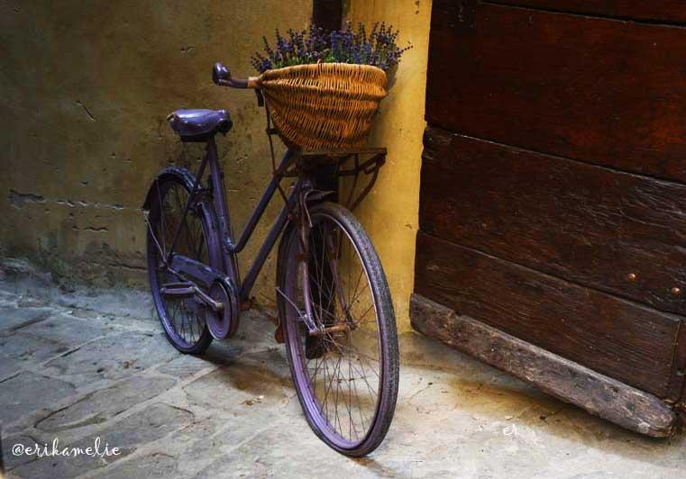 Bici-a-Cortona